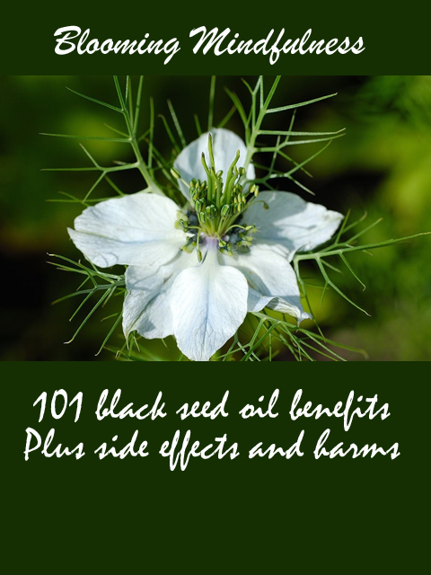 101 Black Seed Oil Benefits Plus Side Effects and Harms