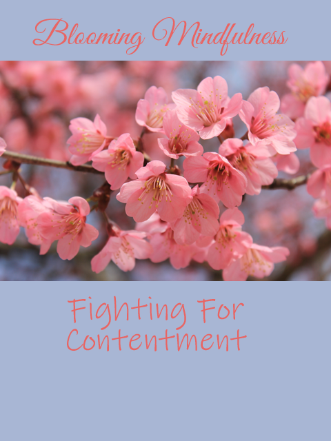 Picture is of pink cherry blossoms, written above this is the name of the blog and below is the title of the post written in pink against a sky blue background
