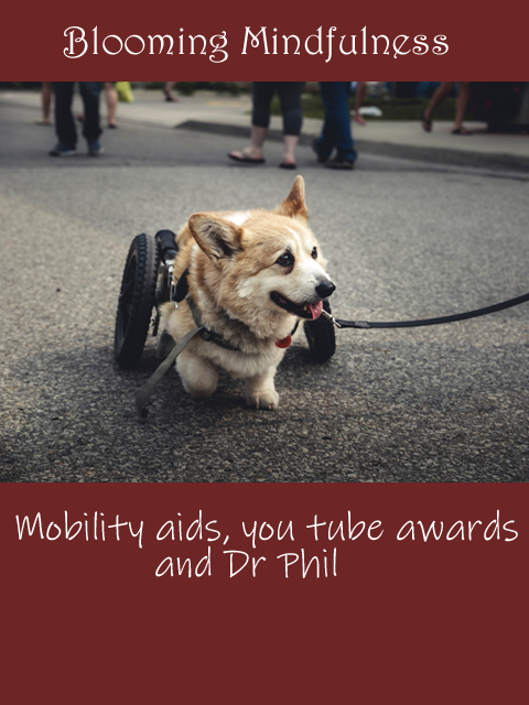 Mobility aids,You Tube awards and Dr Phil