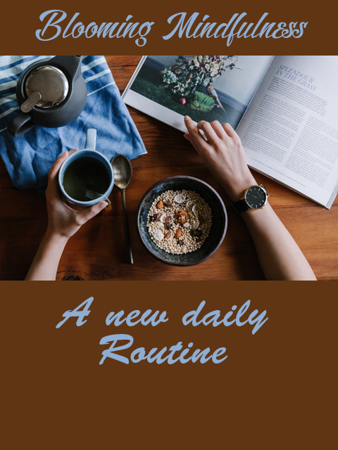A new daily routine