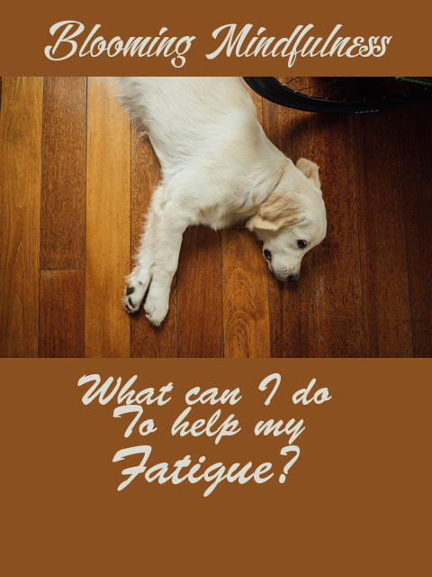 what can I do to help my fatigue?