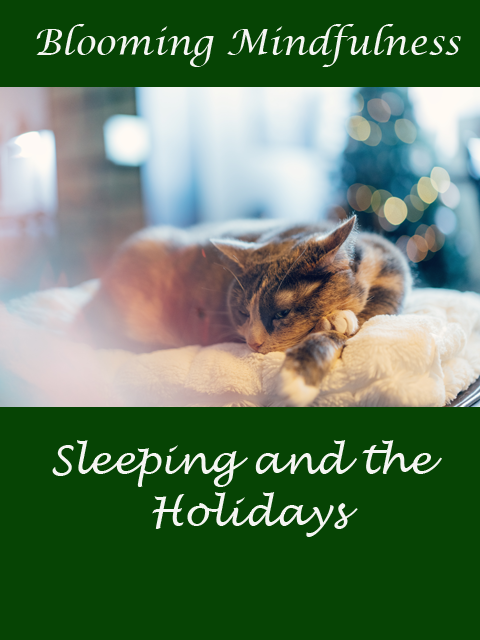 Sleeping and the holidays