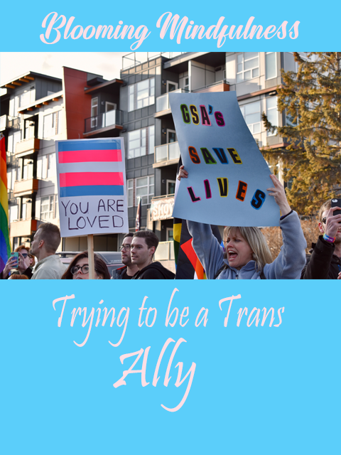 Trying to be a trans ally
